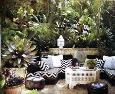 Great Tropical Moorish Seating Space