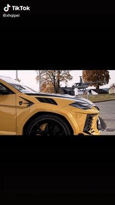 Lamborghini Urus Heavily Spec'd Display Best Luxury Cars, Luxury Suv, Lamborghini Veneno, Sports Car Racing, Card Tricks, Cute Cars, Truck, Display, Videos