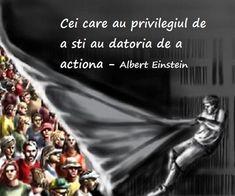 Maxime in imagini Einstein, Alba, True Words, Don't Forget, Memories, Quotes, Quotations, Qoutes, Quote