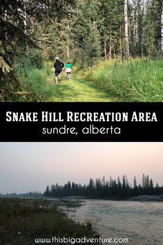 Stuff To Do, Things To Do, Create Your Own Adventure, Evergreen Forest, Trail Maps, Cross Country Skiing, Beautiful Morning, The Locals, Hiking