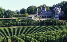 St Emilion et les vignobles | France