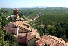 HARVEST SEASON: WHAT ITALY TRAVEL HAS TO OFFER IN AUTUMN source : ecophiles.com #italytravel