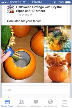 How to Make a Pumpkin Vase Centerpiece is part of Thanksgiving crafts Flower Arrangements - We're falling for Fall! You can easily decorate your house for fall on a budget by turning pumpkins into DIY vases or centerpieces Pumpkin Vase, Pumpkin Centerpieces, Thanksgiving Centerpieces, Vase Centerpieces, Thanksgiving Crafts, Fall Crafts, Holiday Crafts, Holiday Fun, Pumpkin Flower