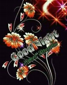 Photos Of Good Night, Cute Good Night, Good Night Gif, Good Night Messages, Good Night Wishes, Good Night Image, Good Night Quotes, Night Time, Night Night