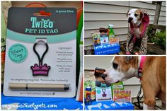 Twigo Pet ID tags - no noise, customizable - July #petbox review and #giveaway!