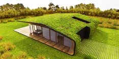 The roof of your house can actually be something to get excited about. Here are 20 amazing homes with grass roof designs. Drought Resistant Plants, Roofing Options, Residential Roofing, Urban Setting, Top 5, Roof Design, Terrace Garden, Green Building, Garden Design