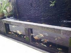 landscape glass design | Koi Glass Pond | Home and Landscaping Designs