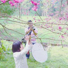 【ruke_chao】さんのInstagramをピンしています。 《冬天越近就越想念滿山的櫻花 #桜 #山櫻花 #🌸 #櫻花 #winter #冬》