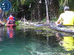 Veterans stop to swim while kayaking The Silver River with IRISHWATERDOGS, Florida