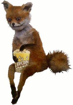 Clay Fox Eating Popcorn