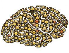 """VIDÉO : Comprendre le cerveau pour prévenir le """"pétage de plomb"""" !"""
