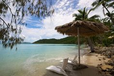 If you're considering Long Island Whitsundays for a vacation, read this post to find out why this island is such a great destination in the Whitsundays. The Whitsundays, Snorkelling, Island Resort, Long Island, Day Trip, Palm Trees, How To Find Out, Scenery, Relax