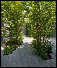 // La casa tra gli alberi by Studioata. Photo: © Beppe Giardino