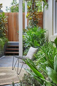 © Adam Robinson Design Sydney Outdoor Design and Styling Landscape Stanmore Project Outdoor Areas, Outdoor Rooms, Outdoor Living, Outdoor Decor, Lush Garden, Home And Garden, Landscape Design, Garden Design, Small Courtyards