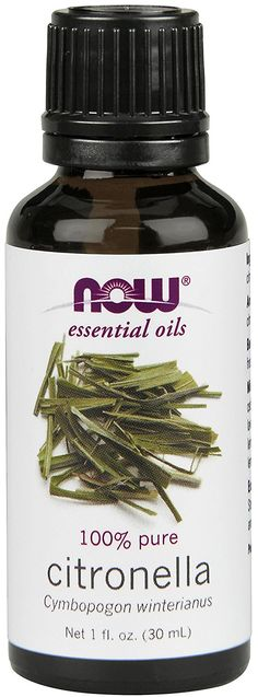 Now Foods Citronella Oil, 1 Ounce -- New and awesome product awaits you, Read it now : aromatherapy essential oils Citronella Essential Oil, Citronella Oil, Now Essential Oils, Citrus Essential Oil, Diy Mosquito Repellent, Lemongrass Oil, Cedarwood Oil, Pure Oils, Scented Oils