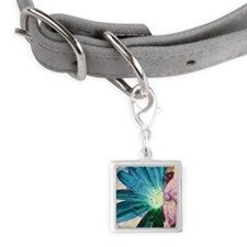 Small Square Pet Tag