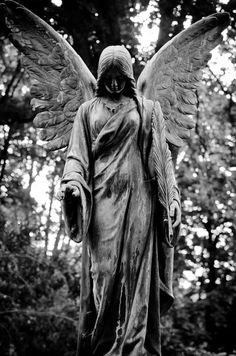 Engel Bergfriedhof Heidelberg - As a child I walked through this cemetery on an almost daily basis. It was a very peaceful and almost magical way to walk home from school. Cemetery Angels, Cemetery Statues, Cemetery Art, Angels Among Us, Angels And Demons, Statue Ange, Fantasy Kunst, Old Cemeteries, Graveyards