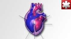 Easy-to-follow tutorial videos and quizzes help you learn complex medical concepts and skills