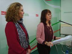El PSOE quiere una auditoría sobre la radiotelevisión municipal y Epassa