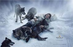 Wolf ad for Shangri-la Hotels & Resorts, Ogilvy & Mather (hong Kong).