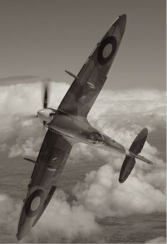 Spitfire, black and white