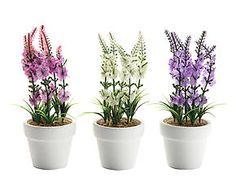 3 Plantes artificielles céramique, blanc - H16