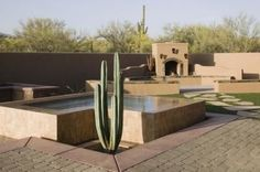 Google Image Result for http://img.ehowcdn.com/article-new/ehow/images/a07/cq/ei/plant-small-desert-garden-800x800.jpg
