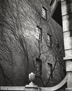 Sutton Place (1945) - Brett Weston