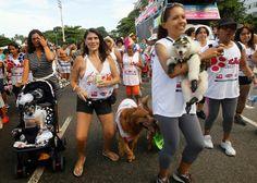 Στο Ρίο με τους σκύλους...