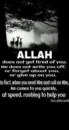 Remember Allah, make supplication, make lots duaa. Alhamdulillah