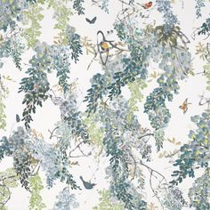Shop for Fabric at Style Library: Wisteria Falls by Sanderson. Beautiful butterflies and birds dart between branches of a blossoming wisteria on this Sanderson Fabric, Beautiful Nature Wallpaper, Made To Measure Curtains, Wisteria, Beautiful Butterflies, Old Things, Things To Sell, Fabric Design, Iphone Wallpaper