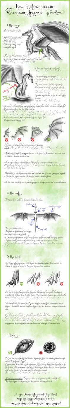 Anime Drawing Tutorial How to draw Classic European Dragons - by Gewalgon by Gewalgon on deviantART - Fantasy Creatures, Mythical Creatures, Animal Drawings, Cool Drawings, Dragon Sketch, Dragon Art, Dragon Wing, Wow Art, Painting & Drawing