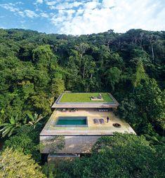 Desde el exterior, la selva parece comerse la casa.