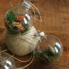 Terrarium ornaments - make a set with the butterfly life cycle?  Needle felted caterpillar and crystalis would be cool.  :)
