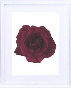LAMBIE product_rose.jpg