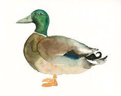 MALLARD DUCK Original watercolor painting 10X8inch by dimdi, $25.00
