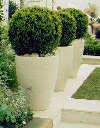 Garden Tubs And Pots Tall skinny modern planters patio decor pinterest planters box in pots could do this with lavender illuminated planters workwithnaturefo