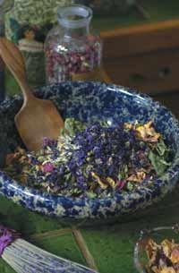 Recipes for Radiant Beauty from Rosemary Gladstar