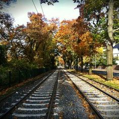 Beautiful Outono na Alemanha Herrenh user Garten Hannover Alemanha