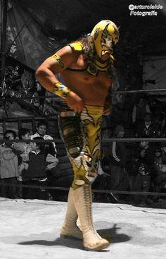Hoy se celebra un aniversario más del hoy llamado Consejo Mundial de Lucha Libre; se llega por fin al esperado duelo de Máscaras entre Atlantis y el Último Guerrero, con un elevado costo de los tickets y la expectativa de saber al ganador, les deseamos suerte. Creo que el ganador será Atlantis, pero también quiero dejar un antecedente: El Guerrero ya dejo alguna vez, tirada una lucha de máscaras, cuando no se presento a uno de estos duelos, en la hoy extinta Promo Azteca