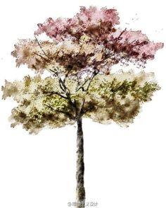 水彩风格的手绘树6