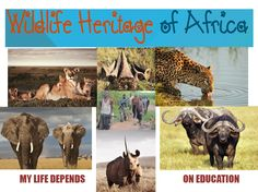 http://www.everestfoundation.org.za/high-performance-culture-hpc/wildlife-heritage-of-africa/