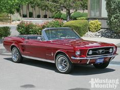 THE MUSTANG OF ALL TIME for me would be -The 1967 Ford Mustang Convertible.I prefer the lines on this mustang compared to other mustangs from the past. Ford Mustang 1967, 1967 Mustang Convertible, Mustang Cabrio, Car Ford, Ford Mustangs, Red Mustang, Classic Mustang, Ford Classic Cars, Classic Trucks