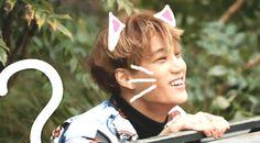 My baby ♡ Kai | Kim Jongin | EXO
