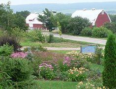 Corn Hill Nursery & Cedar Café - Kings County, NB