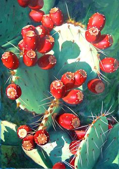 Prickly Pear Cactus Fruit Watercolor Painting by Brenda Semanick- monplaisi catherine Cactus Painting, Fruit Painting, Watercolor Cactus, Cactus Art, Watercolor Paintings, Cactus Drawing, Cacti And Succulents, Cactus Plants, Prickly Pear Cactus