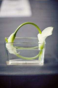 for the minimalist wedding