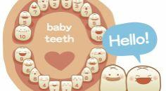 conheça cada etapa dos dentes dos seus filhos.