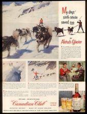 1953 Switzerland glacier husky sled dog team photos Canadian Club whisky ad