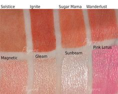 Nyx Blushes and Lip Products